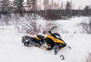 Снегоход BRP SKI-DOO summit 154 Екатеринбург